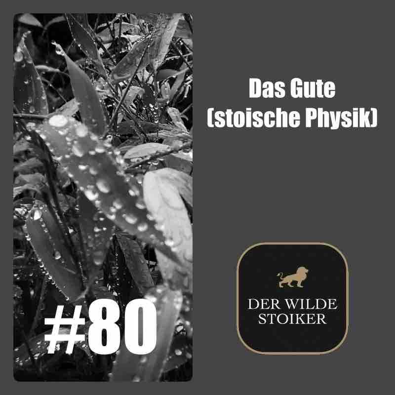 #80 Das Gute (stoische Physik)