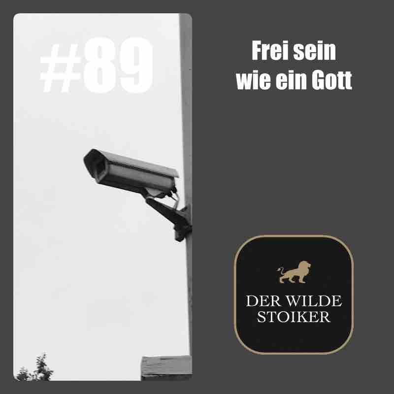 #89 Frei sein wie ein Gott (und trotzdem Steuern zahlen) - DER WILDE STOIKER